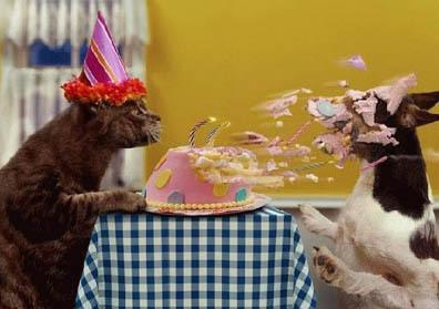 Name:  happy-birthday.jpg Views: 86 Size:  35.1 KB