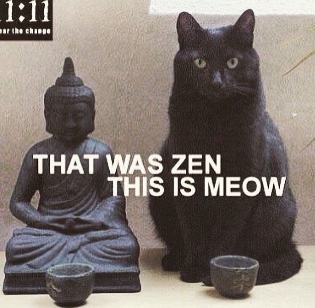 Click image for larger version.  Name:zen and meow.jpg Views:2 Size:132.4 KB ID:64781